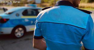 politie polistist masina