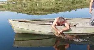 sacalaia lac pescar porc mistret
